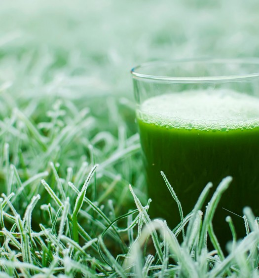 15 продуктов, которые можно замораживать