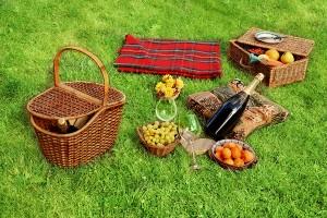 пикник с вином