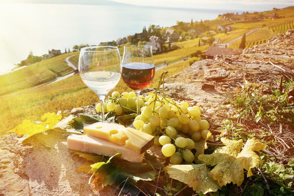 Сыр и вино: мы такие разные, но все-таки мы вместе
