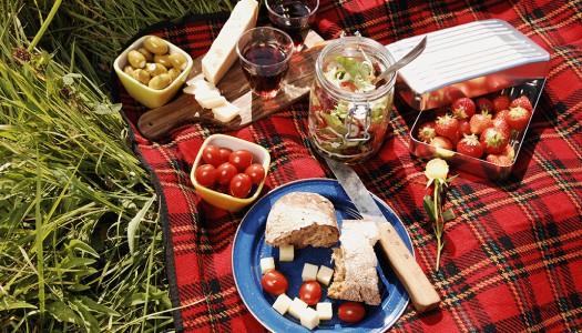 Как устроить незабываемый пикник в Шотландии