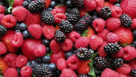 Полезных ягод нам не счесть