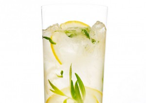 Лимонный джин с эстрагоном
