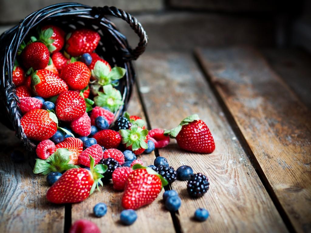 Брусника – ягода, дарящая бессмертие