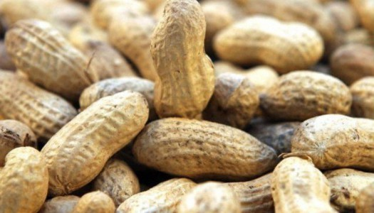 10 неизвестных фактов об арахисовой пасте