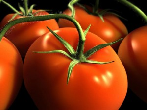 1275837584_pomidori1