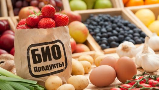 Organic – что означает эта маркировка на продукте?
