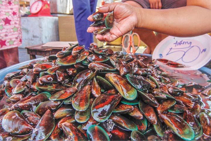 рыбный рынок филлипины
