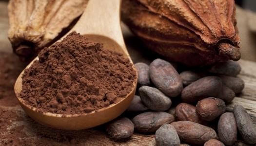 Чем больше в шоколаде какао, тем…