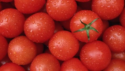 Каждому овощу свой срок