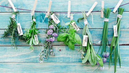 «Средиземноморские травы»: инструкция к употреблению